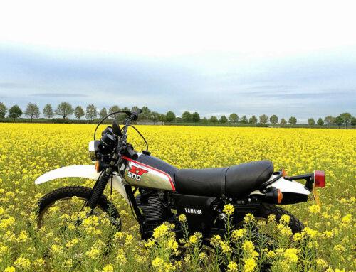 Yamaha XT 500 – Zeitlos schön und unverwüstlich