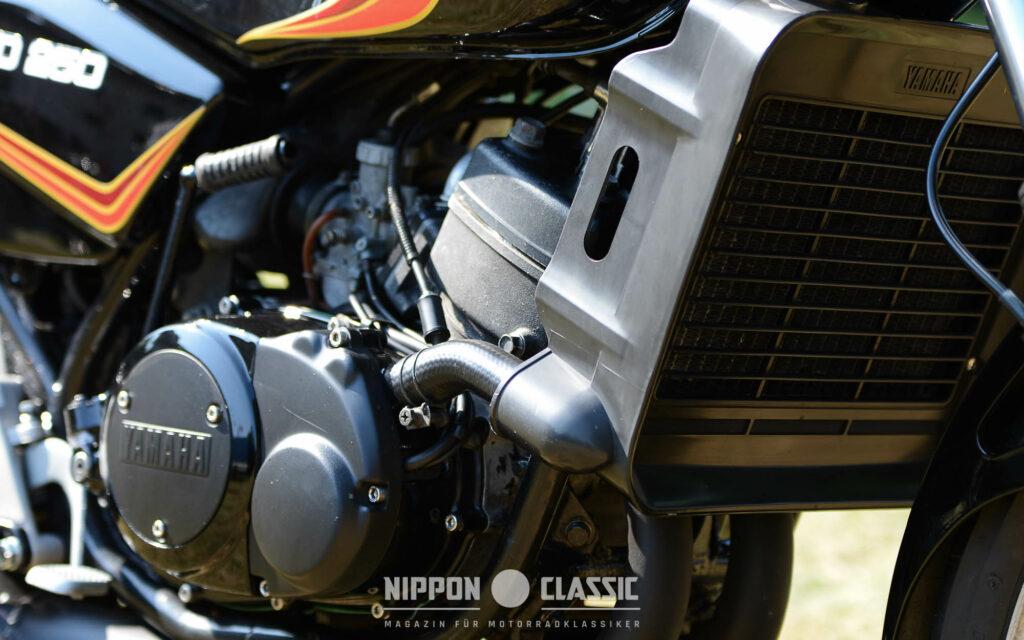 Mit der Yamaha RD 250 LC trat der ultimative Kick in den Vordergrund