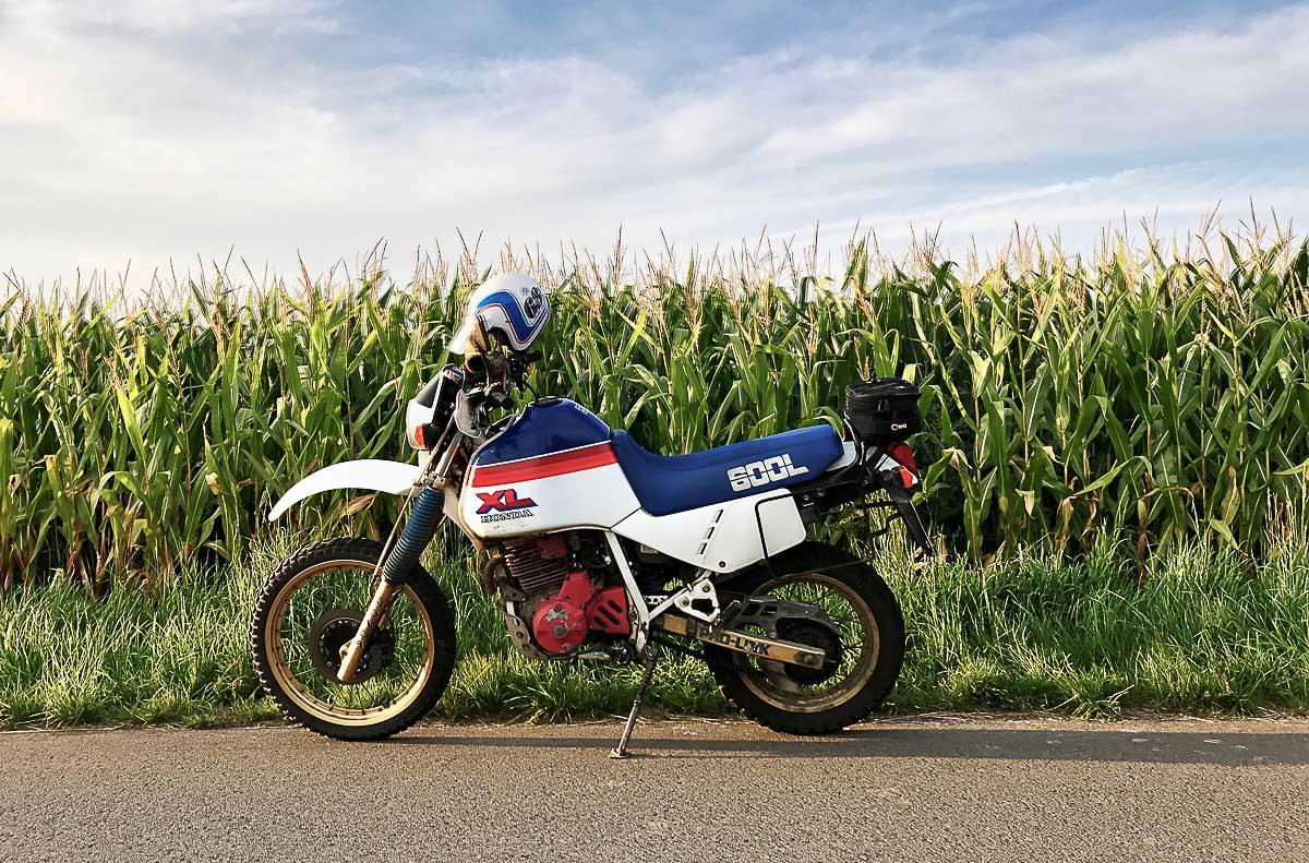 HONDA XL 600 (1983-1987)