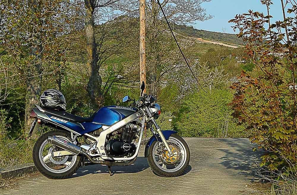 SUZUKI GS 500 E (1988 - 2007)